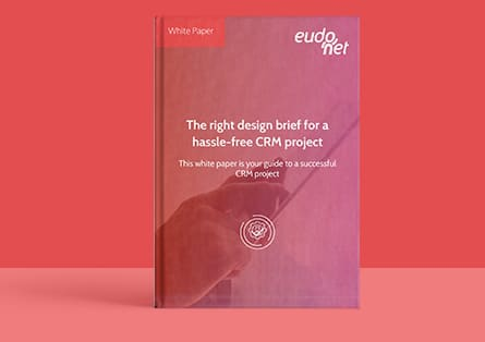 White paper design brief CRM