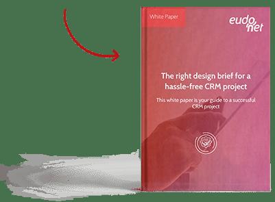 White paper design brief CRM